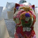 Fleurs sur le musée Guggenheim